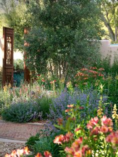 Huge olive trees and layers of colorful plants soften the entryway from this home's motor court to the front door.