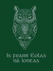Irish Proverb T-Shirts of the Month : January 2013 - Seanfhocal . Fitted Style T-Shirt