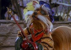 Sir Didymus, Labyrinth. La mia recensione @ http://postmodemplan.wordpress.com/2013/02/18/labyrinth-dove-tutto-e-possibile-da-flop-a-stracult/