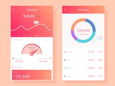 Daily UI 011 # Overview page by dreamflyr