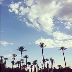 Thanks for the great picture of the skyline from the #EVIT Main Campus, Tiana!  http://instagram.com/p/c_-A06OvlP/