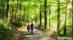 Jedes Jahr zieht es Oberpfälzer in ihrem Urlaub in die Ferne. Doch auch in der Heimat lässt sich gut entspannen. E Wir haben uns einige der schönsten Wanderrouten für euch angesehen. Elements Of Nature, Travel Organization, Built Environment, Walking In Nature, Country Roads, Castle Homes, Green Landscape