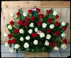 50 rosas