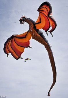 Amazing 3D Kites Designs. Wow! Talk about taking control of the sky. ..