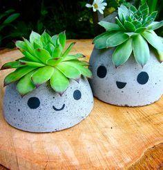 DIY Adorable planters