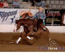Mandy McCutcheon - First Female and Non Pro NRHA Million Dollar Rider! #horses #Horse #HorseTraining #Reining #cutting #cowhorse #roping #HorseVideos #horsebarn #quarterhorses #NRHA #AQHA