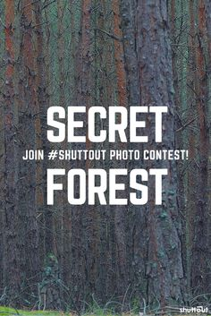 Join and upload your best #forest #photo & check out #shuttout - new, and the first truly #social #photography #contests