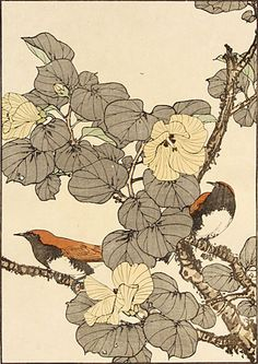 Imao Keinen. Little Leaf Linden Hibiscus, Temminck's Robin. Color woodblock, 1891.