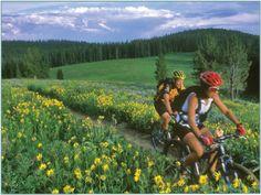 Meadow biking in gorgeous Big Sky, Montana {Yellowstone country}