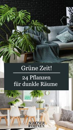 Die 24 besten Pflanzen für dunkle Räume Do you also have one or the other dark corner in the hallway, in the basement exit or in the windowless bathroom, in which nothing simply wants to thrive? House Plants Decor, Plant Decor, Home Air Purifier, Bathroom Plants, Sombre, Garden Care, Cool Plants, Air Plants, Modern Room