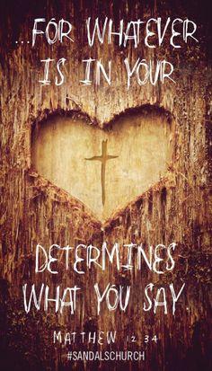 Matthew 12:1-50