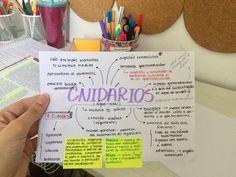 Resumindo de biologia: Reino Animália (parte 2) - Filo Cnidaria #biologia #cnidários #ENEM2018