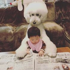 This Little Japanese Girl And Her Pet Poodle Will Make Your Day | Bored Panda