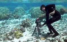 Centuries old forests of coral remain untouched at the bottom of the ocean, begging us to come discover what's hidden among the unknown.  A small drone from Stanford might finally allow us to do this.  This shoe box sized robot is equipped with cameras on all sides, allowing it to sneak through the coral forests and get plenty of images and information without disturbing the coral whatsoever.