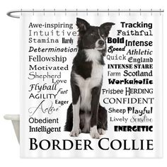 Border Collie Traits Shower Curtain on CafePress.com