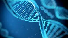 Pesquisadores dizem que alterações no DNA podem determinar orientação sexual de uma pessoa