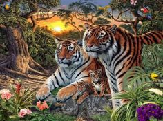 How many tigers are there in this picture? can you find them all?