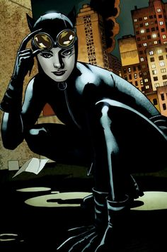 Catwoman screenshots, images and pictures - Comic Vine Catwoman Cosplay, Batman And Catwoman, Batman Comics, Batgirl, Supergirl, Dc Comics, Batman Art, Batman Robin, Superman