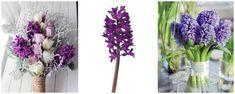 zambile mov - idei buchete Glass Vase, Nasa, Plants, Home Decor, Decoration Home, Room Decor, Plant, Home Interior Design, Planets