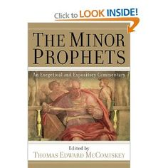 Dictionary of the old testament wisdom poetry writings the ivp the minor prophets an exegetical and expository commentary book jacket fandeluxe Images