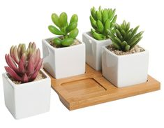 "Promising review: ""This is a great planter for tiny succulents and cacti. The holes in the bottoms are key for not drowning your plants and the wood tray holds any excess water. There were no chips or cracks upon arrival and it definitely complements my other decor."" —EmilyGet it from Amazon for $14.99."
