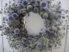 Echinops      Globe Thistle Wreath   Sea Holly    by donnahubbard, $55.00