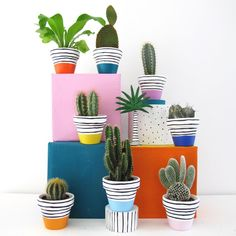 Shop Rainbow Set - 8 Mini Plant Pots from This Way To The Circus in Vases & pots, available on Tictail from Mini Cactus, Cactus Flower, Flower Pots, Mini Plants, Potted Plants, Pottery Painting Designs, Painted Plant Pots, Flower Pot Crafts, Pot Plante