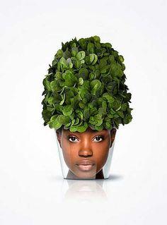 unusual planter design