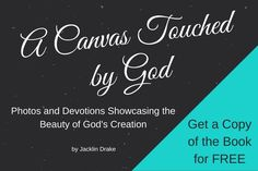 Book Launch, Gods Creation, Book Signing, Blogging, Product Launch, Templates, Writing, Books, Free