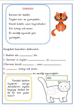 Activity Games, Activities, Turkish Lessons, Turkish Language, Grade 1, Autism, Worksheets, Homeschool, Drama