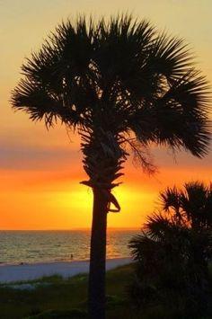 Mexico Beach, Florida!! :)