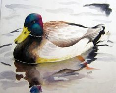 duck watercolored