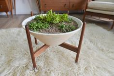 Plant in style with a vintage piece by Lagardo Tackett.