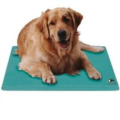 canine cooling pad
