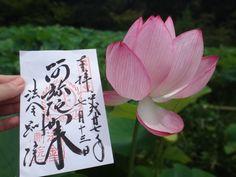 蓮で有名な法金剛院★京都