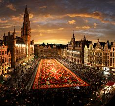 incredible flower carpet, Brussels, Belgium