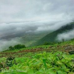 Salalh .Oman Salalah, Pretty Pictures, Middle East, Coastal, Scenery, Around The Worlds, Mountains, Places, Travel