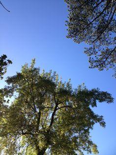 Carolles, France   wezzoo #WeatherByYou   2012-11-02
