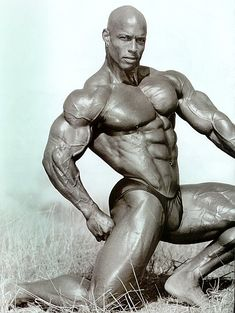 ♍ Shawn Ray (9/9/1965 in Placentia, CA) is a former professional bodybuilder & author. In over 30 major bodybuilding competitions, Ray only failed to place in the top 5 once. Signing his first professional bodybuilding sponsor contract in '88, Ray has been featured in 6 video documentaries. Ray also wrote a book about how to become a bodybuilder, named The Shawn Ray Way.