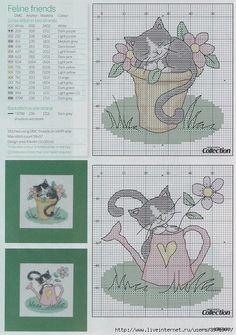 Gatti giardinaggio