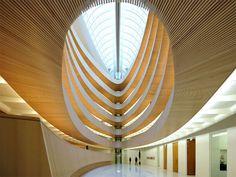 Bibliothek des Rechtswissenschaftlichen Instituts, Zurich. I <3 libraries