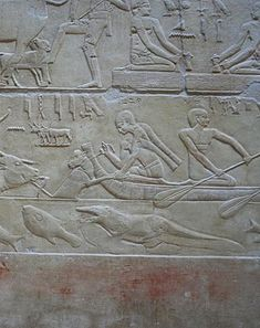 Fish (Sp. Labeo, Barbus bynni). ancient Egyptian relief, Mastaba of Kagemni