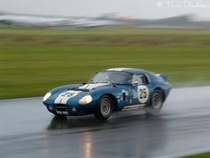 Shelby Daytona Sports Car Racing, Auto Racing, Sport Cars, Race Cars, Shelby Daytona, Shelby Car, Mustang Fastback, Ford Mustang, Le Mans