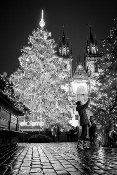 december, christma tree, old town, merri christma, prague christmas, town squar, blog, christmas holiday in prague, christmas trees