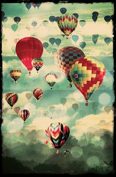 exceptional collection of multicolored hot air balloons.