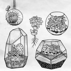 "690 Likes, 53 Comments - Anka Lavriv (@anka.tattoo) on Instagram: ""Terrariums available #terrarium #succulents #cacti #plants #tattooflash #stippling…"""