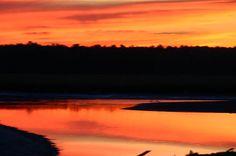 November Sunset by Denyse Duhaime http://denyse-duhaime.artistwebsites.com/?tab=artwork