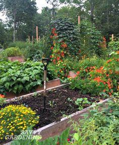 288 best Edible Garden Ideas images on Pinterest | Potager garden ...