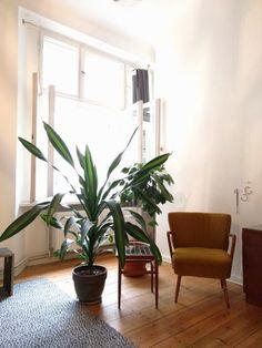 Gemutliche Wohnzimmerecke Mit Pflanze Und Sessel Sowie Kleinem Beistelltisch Einrichtung Wohnzimmer Berlin