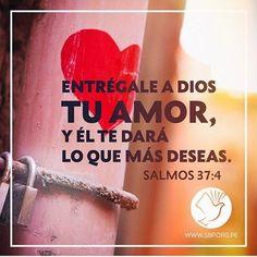 REDE MISSIONÁRIA: ENTRÉGALE A DIOS (SALMOS 37:4)